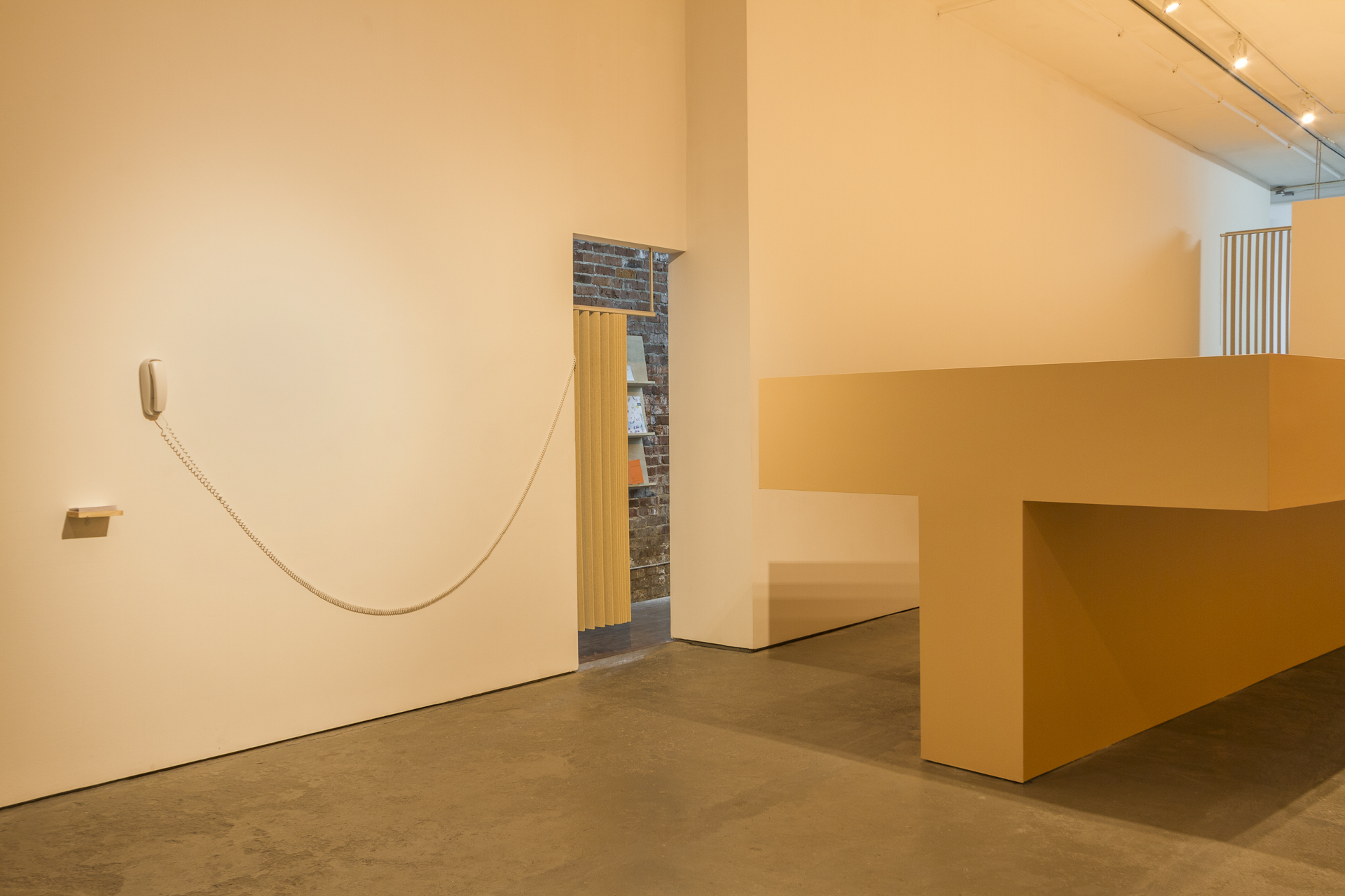 Installation shot including Hold on, Untitled (smize) and Thanks!, Kalli Niedoba, 2014 – Photo by Dennis Ha