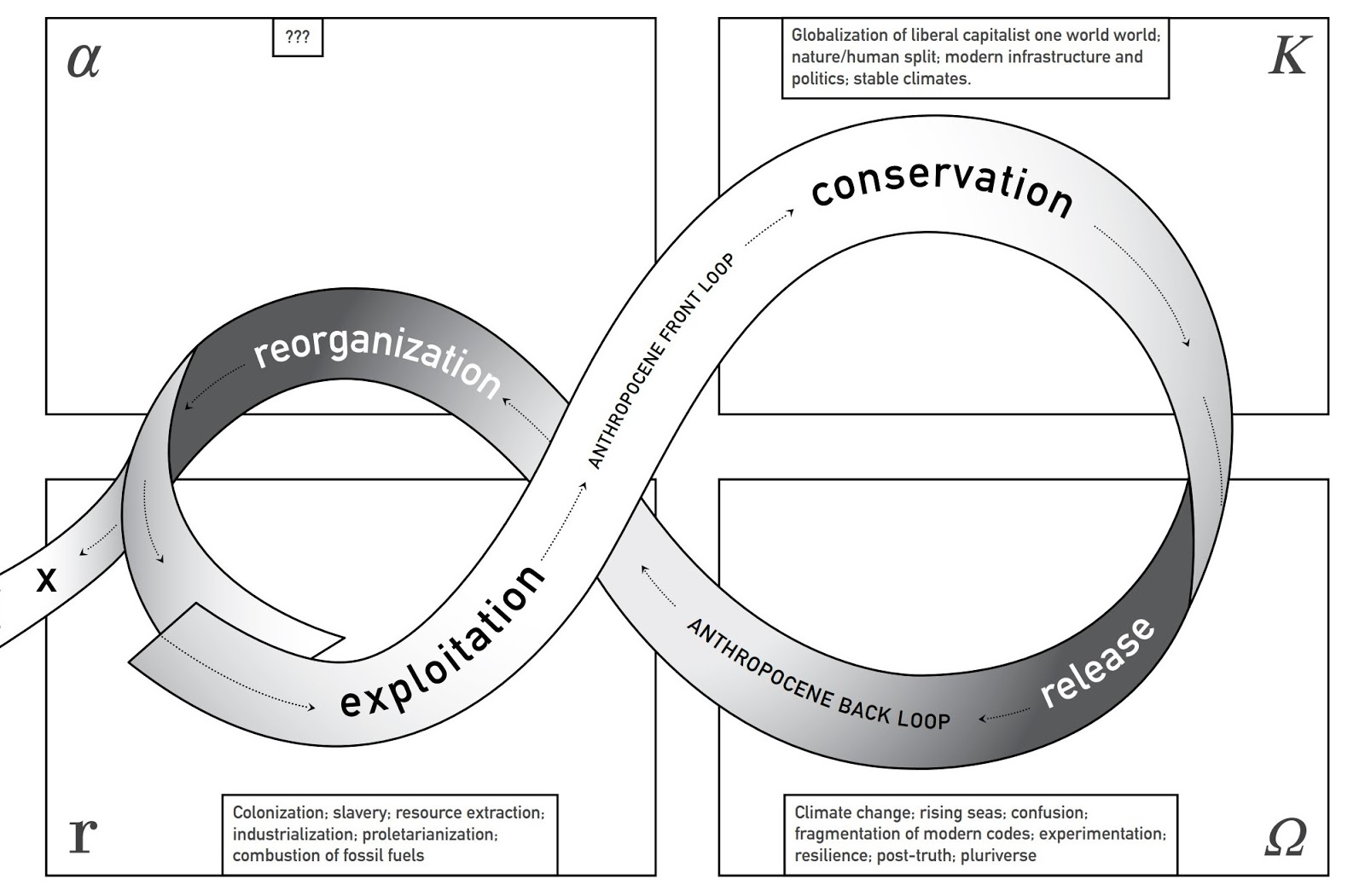 Adaptive cycle. from Lance H. Gunderson and C.S. Holling, Panarchy: Understanding transformations in systems of humans and nature (Washington, D.C.: Island Press, 2002), adapted by Caroline Castro for Anthropocene Back Loop: Experiments in Unsafe Operating Space by Stephanie Wakefield (London: Open Humanities Press, 2020).