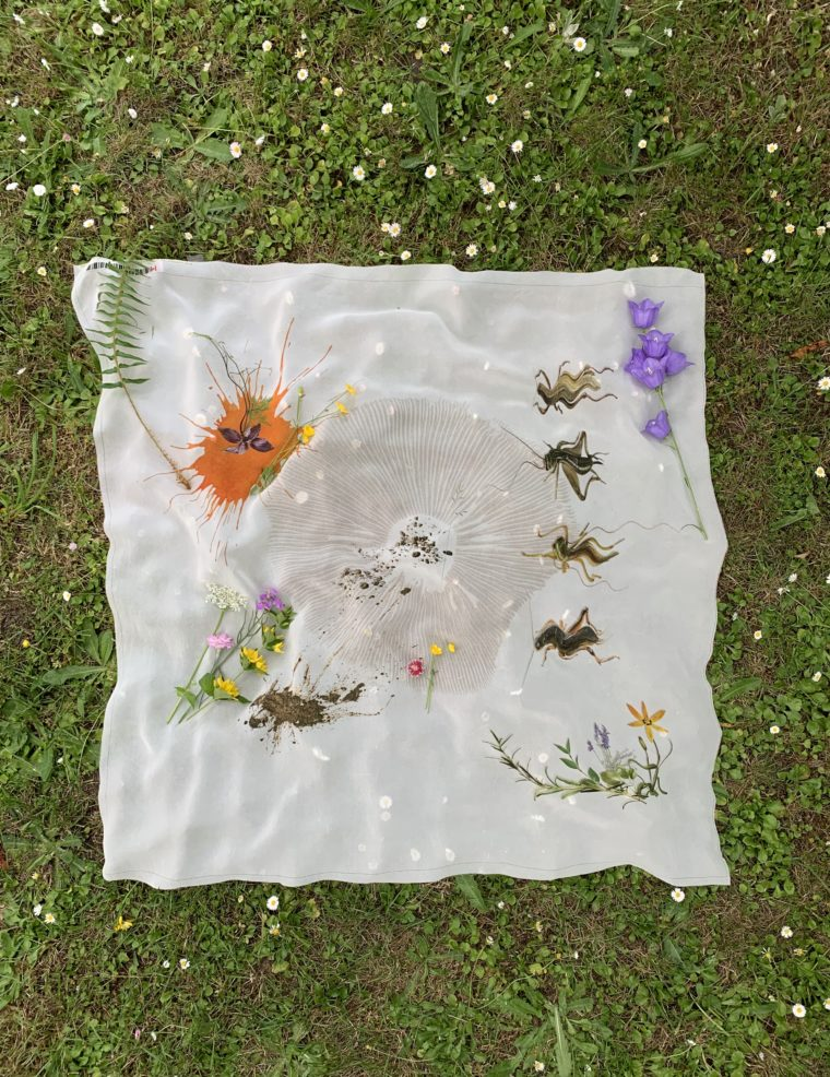A white silk kerchief bearing subtle images of bugs, flowers and soil, is laid out loosely on the grass.
